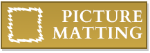 Picture Matting